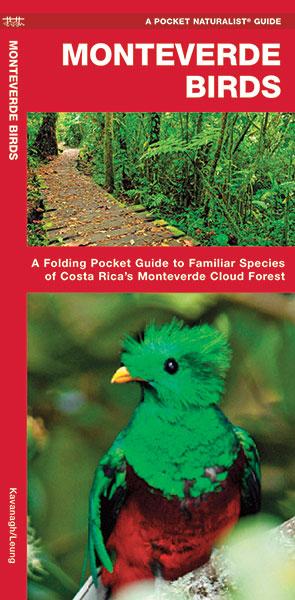 Monteverde Birds