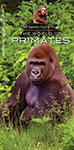 World of Primates, The