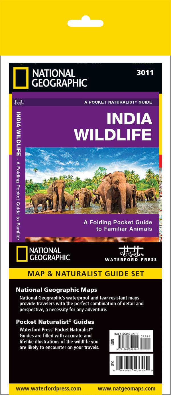 India Adventure Set