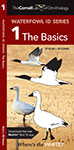Cornell Lab of Ornithology Waterfowl ID 1 The Basics, The