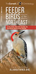 Feeder Birds of the Northeast